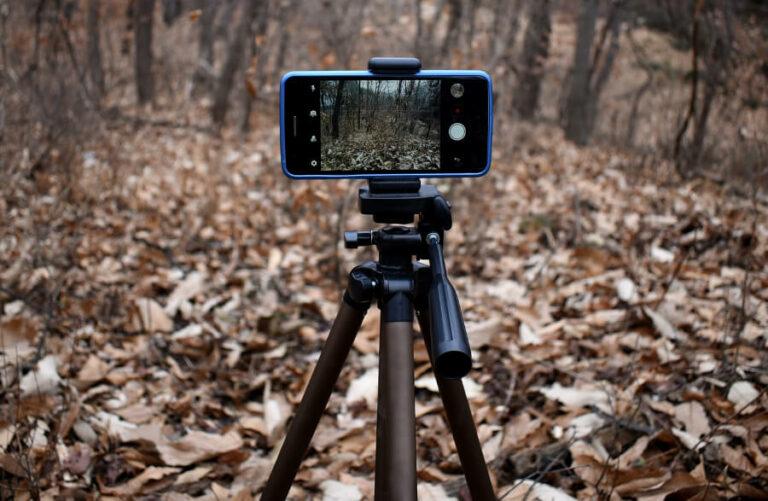 Smartphone Stativ im Wald