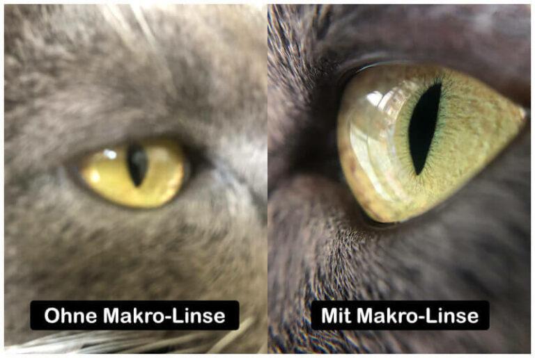 Aufnahme eines Katzenauges mit und ohne Makro-Objektiv